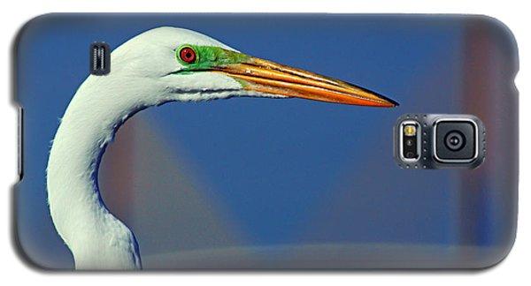 Egret And Skyway II Galaxy S5 Case by Daniel Woodrum