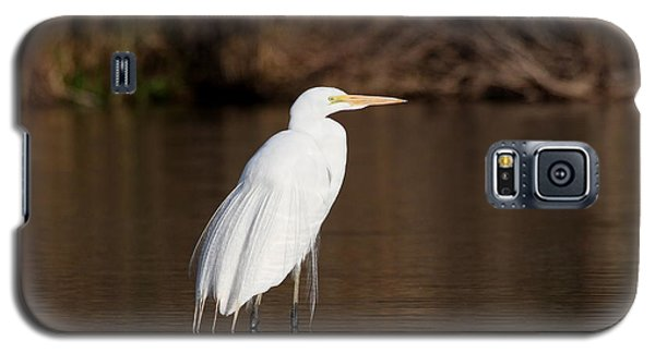 Galaxy S5 Case featuring the photograph Egret At Daybreak by Ruth Jolly