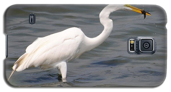 Egret At Lunch Galaxy S5 Case