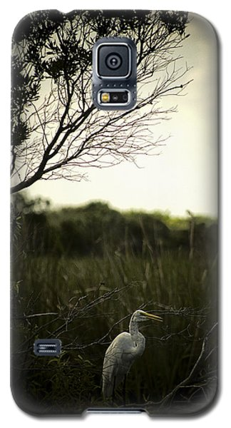 Galaxy S5 Case featuring the photograph Egret At Sunset by Bradley R Youngberg