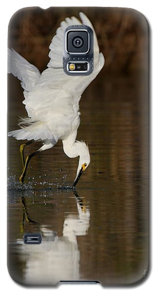 Egret Diving For Lunch Galaxy S5 Case