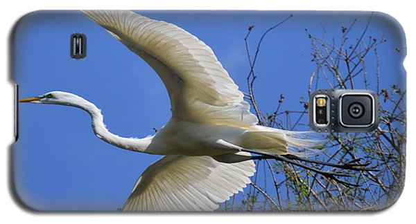 Galaxy S5 Case featuring the photograph Egret Flying by Judith Morris