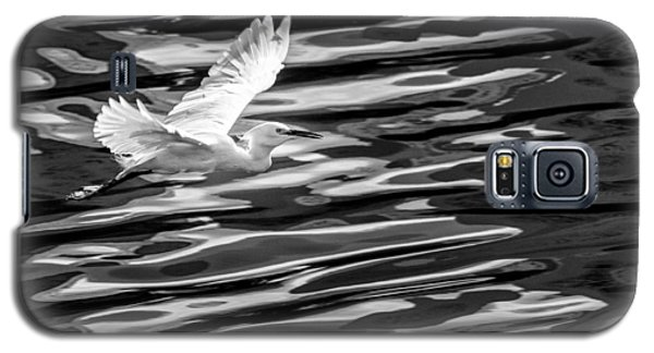 Egret Flying  Galaxy S5 Case
