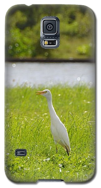 Galaxy S5 Case featuring the photograph Egret On The Green-no2 by Darla Wood