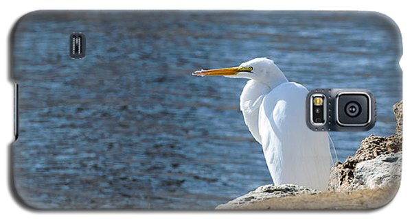 Egret Galaxy S5 Case