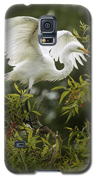 Egret Launch Galaxy S5 Case