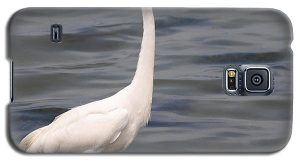 Egret On Alert Galaxy S5 Case