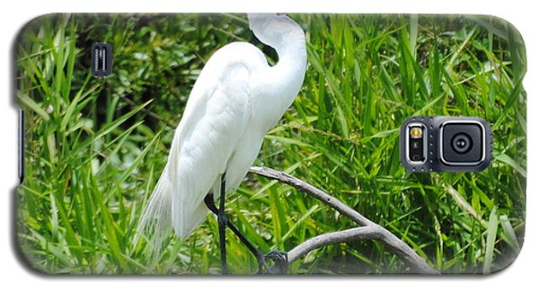 Egret Perching On Branch Galaxy S5 Case