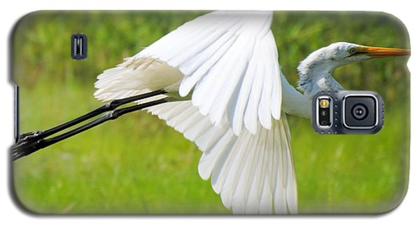 Egret Takes Flight Galaxy S5 Case