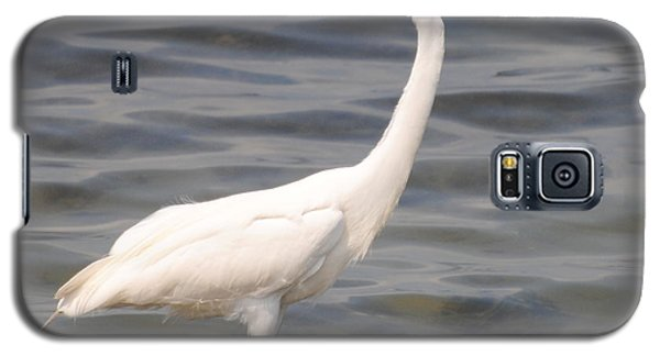 Egret Wading And Watching Galaxy S5 Case