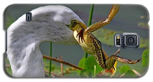 Egret With Frog Galaxy S5 Case