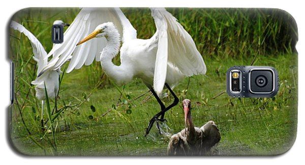 Egrets Taking Flight Galaxy S5 Case