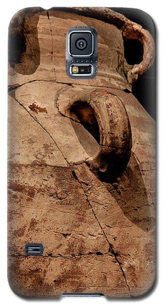 Egyptian Exhibit-4 Galaxy S5 Case