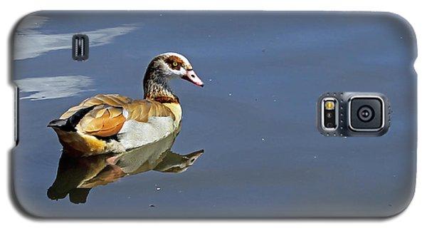 Egyptian Goose Galaxy S5 Case