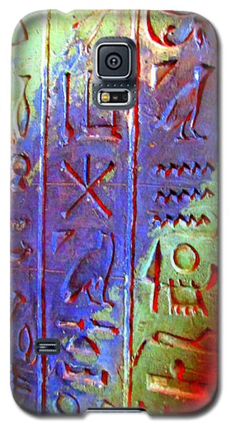 Egyptian Symbols Galaxy S5 Case by Randall Weidner