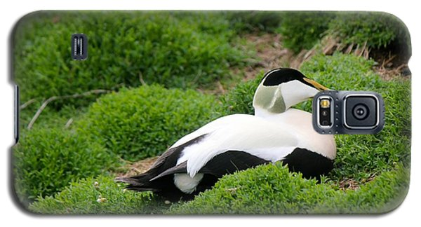 Eider Galaxy S5 Case by David Grant