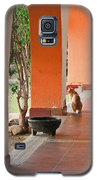 Galaxy S5 Case featuring the photograph El Gato by Marcia Socolik