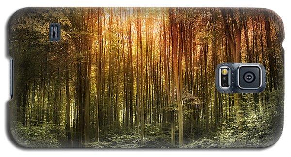 El Paradiso Mio - Awakening Spiritual Landscape Galaxy S5 Case