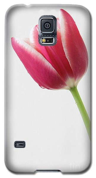 Galaxy S5 Case featuring the photograph Elegance by Anita Oakley