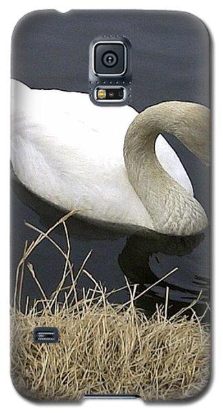 Elegance Galaxy S5 Case