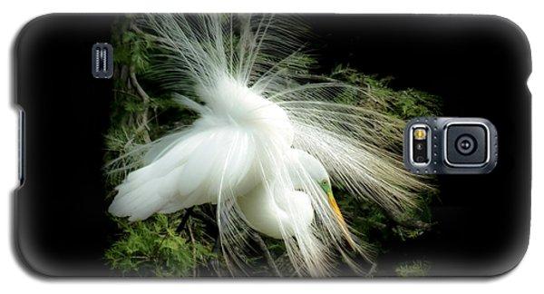Elegance Of Creation Galaxy S5 Case by Karen Wiles