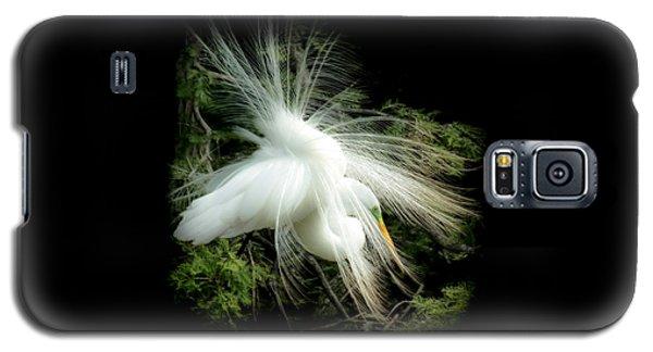 Egret Galaxy S5 Case - Elegance Of Creation by Karen Wiles