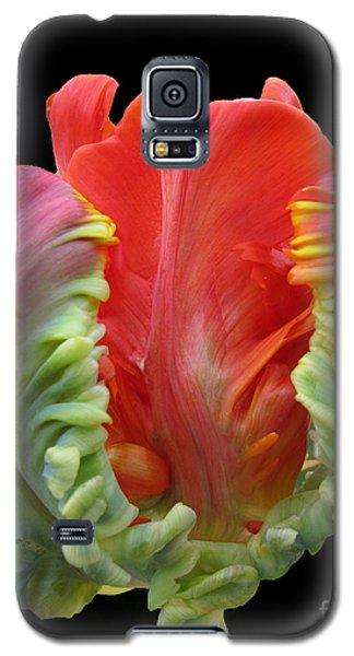 Elegant Galaxy S5 Case