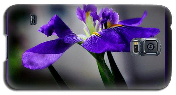 Elegant Iris With Black Border Galaxy S5 Case