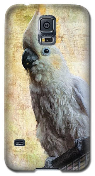Elegant Lady Galaxy S5 Case
