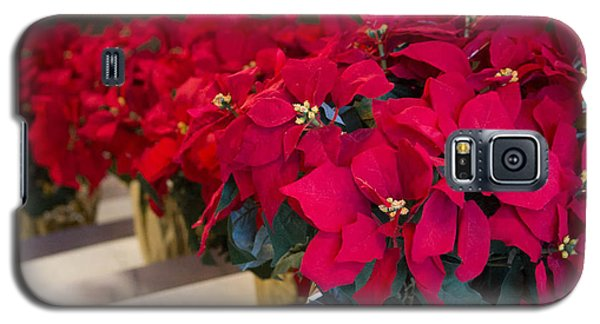 Elegant Poinsettias Galaxy S5 Case by Patricia Babbitt
