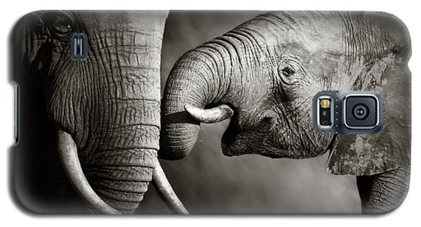 Elephant Affection Galaxy S5 Case