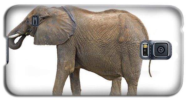 Galaxy S5 Case featuring the photograph Elephant by Charles Beeler