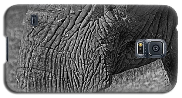 Elephant.. Dont Cry Galaxy S5 Case