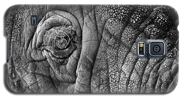 Elephant Eye Galaxy S5 Case