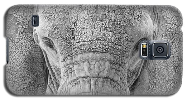 Elephant Facial Galaxy S5 Case