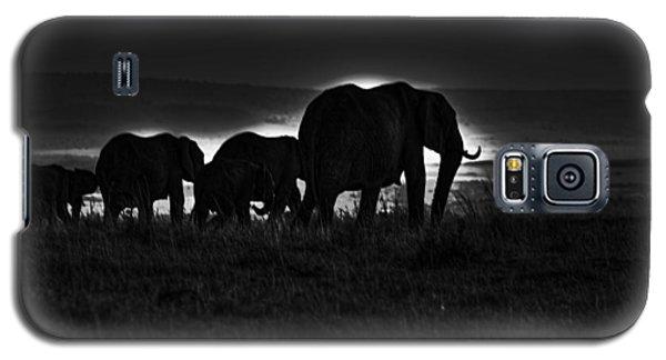 Elephant Family Galaxy S5 Case