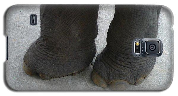 Elephant Feet Galaxy S5 Case