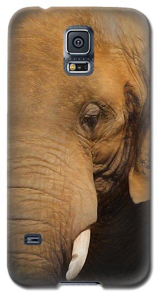 Elephant Galaxy S5 Case by Ian Merton