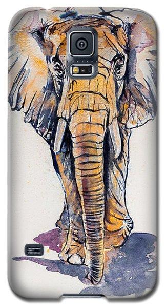 Elephant In Gold Galaxy S5 Case by Kovacs Anna Brigitta