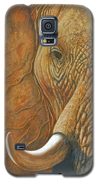 Elephant Matriarch Portrait Close Up Galaxy S5 Case
