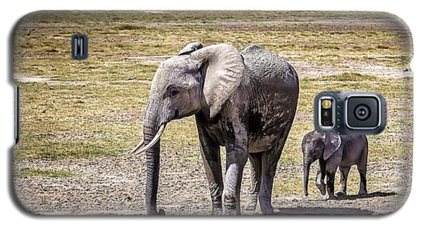 Elephant Mom And Baby Galaxy S5 Case by Marion McCristall
