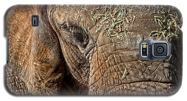 Elephant Never Forgets Galaxy S5 Case