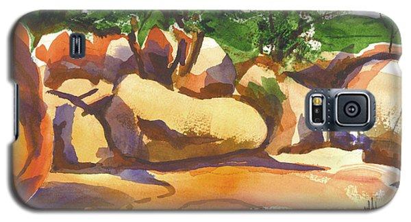 Elephant Rocks Revisited I Galaxy S5 Case