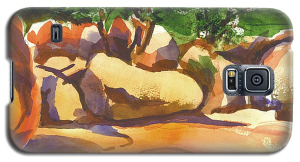 Elephant Rocks Revisited I Galaxy S5 Case