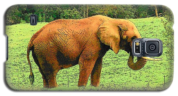 Galaxy S5 Case featuring the photograph Elephant by Rodney Lee Williams