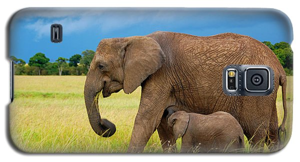 Elephants In Masai Mara Galaxy S5 Case by Charuhas Images