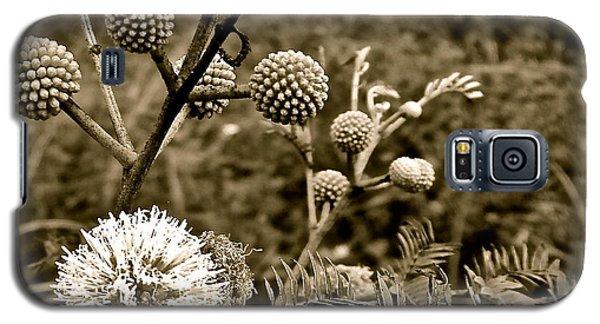 Eleuthera Flora Galaxy S5 Case