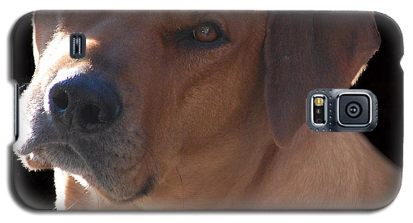 Galaxy S5 Case featuring the photograph Eli by Mim White