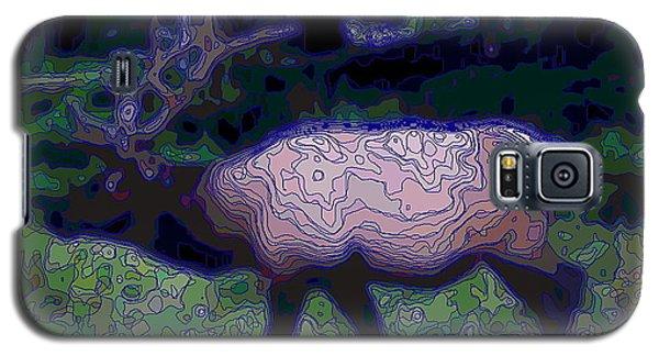 Elk At Night Galaxy S5 Case by Joyce Gebauer