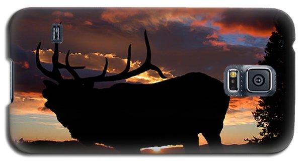 Elk At Sunset Galaxy S5 Case